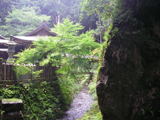 苔生した神社