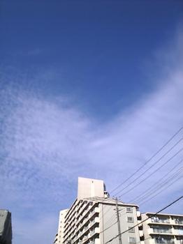 Image1018sky.jpg