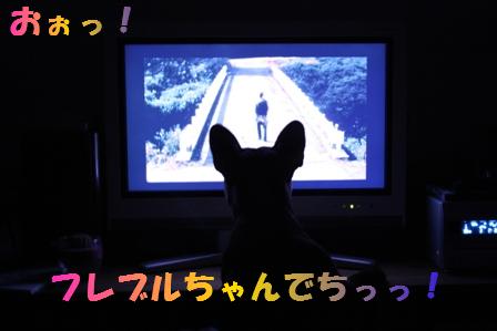 IMG_5046.jpg