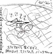 2006.09.04-2.jpg