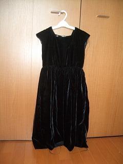 ベルベットのドレス