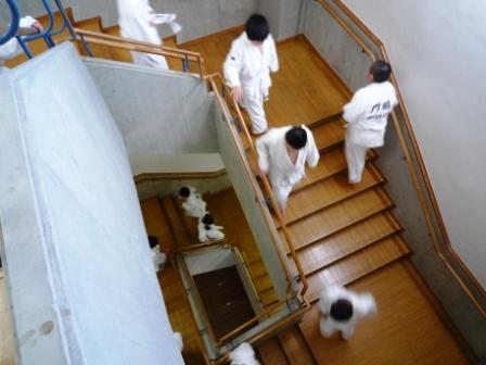 階段登りトレーニング①