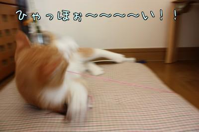 TbMRHpU_.jpg