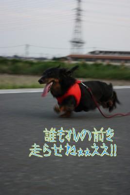 j_SWpamV.jpg