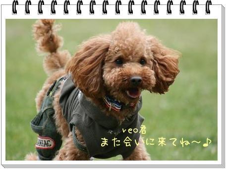 IMG_5996.jpg