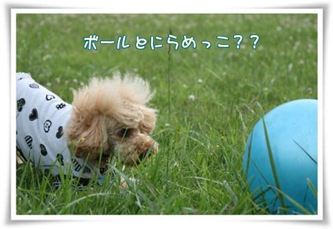 IMG_7767.jpg