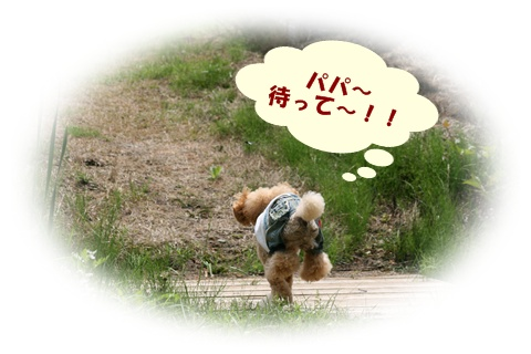 IMG_8270.jpg