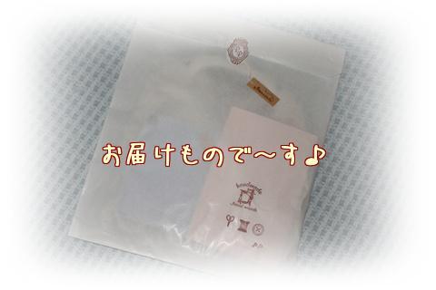 IMG_8404.jpg