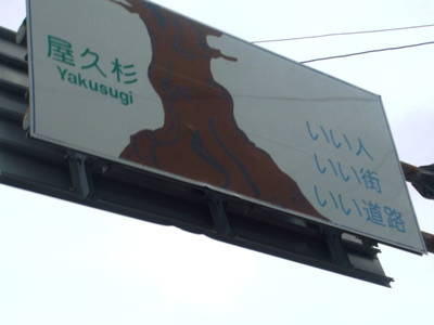 yakushima12.jpg