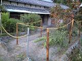 s-柿の木のある家