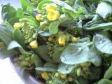 小松菜菜の花