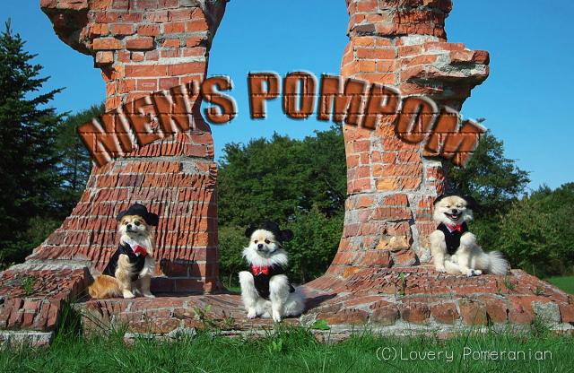 menspompom1_20071109234235.jpg