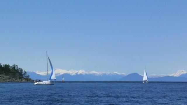 Sail 04 06 025
