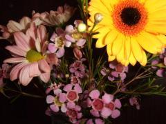 9月24日今週のお花