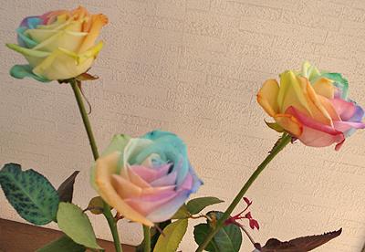造花みたいな薔薇2本で1,000円