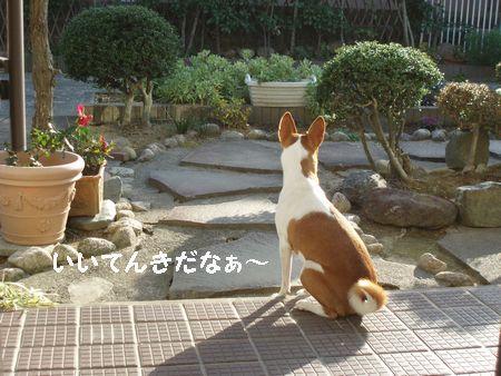 暖かいと庭で過ごします。