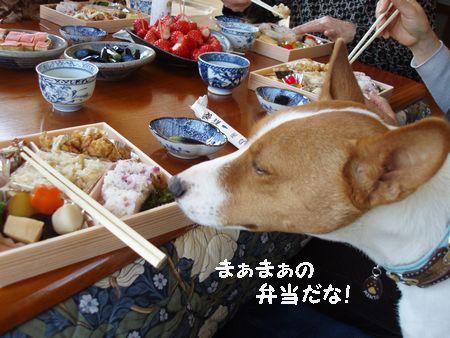 味はまぁまぁ~かな・・・