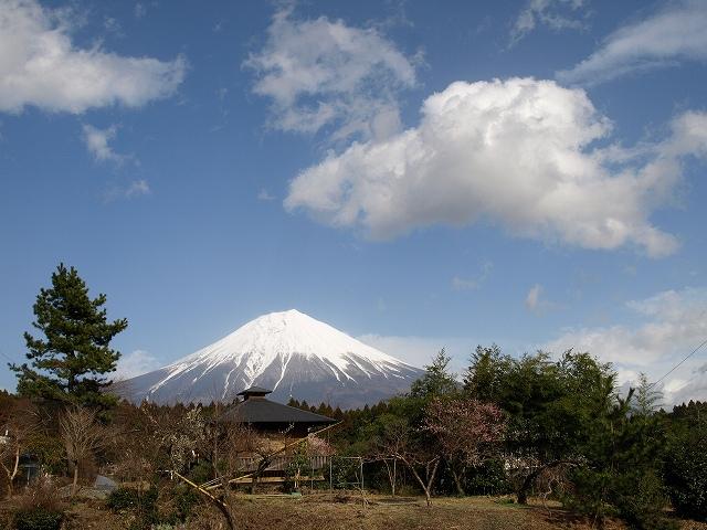 田貫湖富士山1