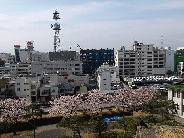 舞鶴城18