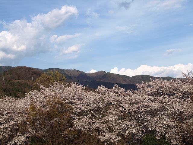 愛宕山10