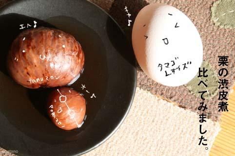 栗渋皮煮-比較検証