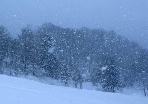 伊ノ沢スキー場-1
