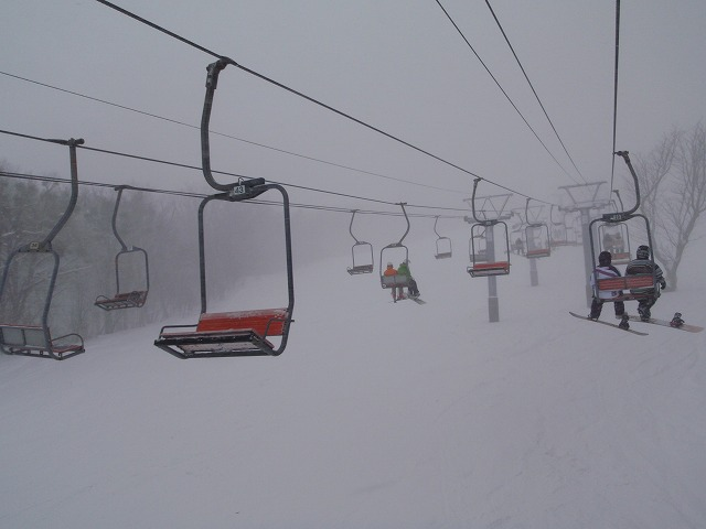 カヤ畑コースに移っても、まだ吹雪いてる…