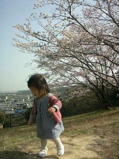 ななみと桜