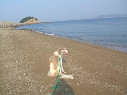 海は、やっぱ広いな~!!