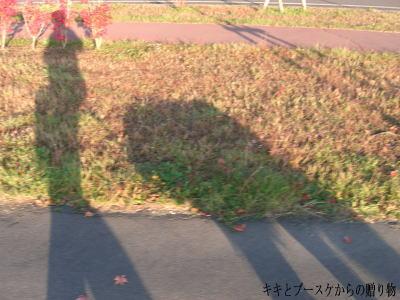 k-2008-10-13-2.jpg