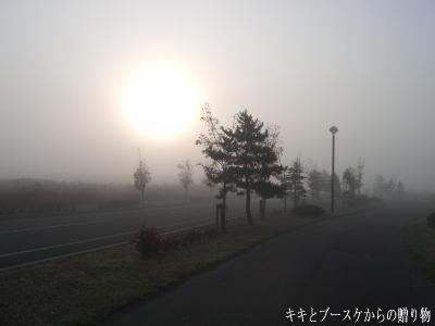 k-2008-10-16-1.jpg