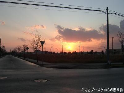 k-2008-11-2-1.jpg