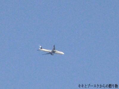 k-2009-3-24-3.jpg