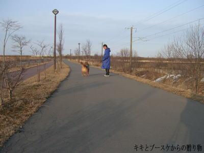 k-2009-3-24-4.jpg