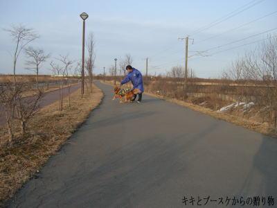 k-2009-3-24-5.jpg