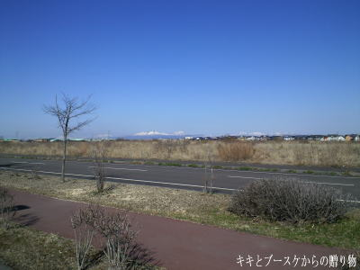 k-2009-5-14-8.jpg