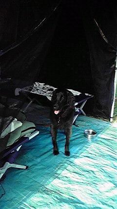 キャンプ09