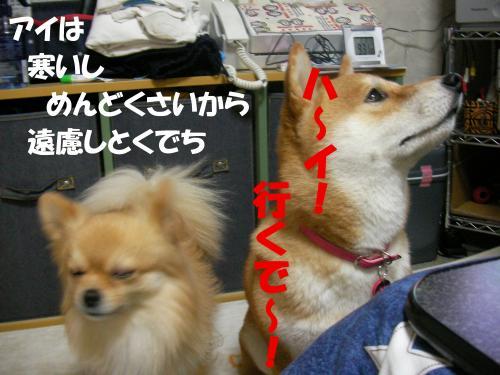 SW080212h_convert_20080219144839.jpg