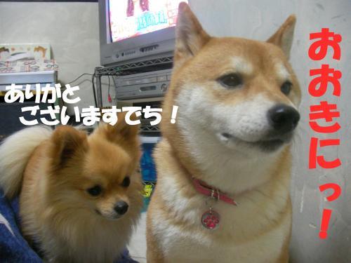 SW080219d_convert_20080220003603.jpg