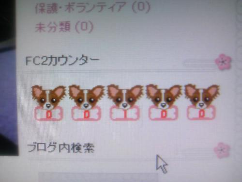 TS3C0063_convert_20080220000732.jpg