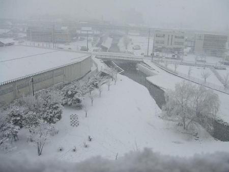 雪積もったよ!5-w600