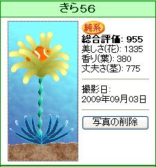kira53.jpg