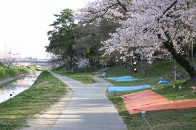 桜子と勇太郎が寝転んだ河原