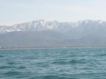 20090506b.jpg