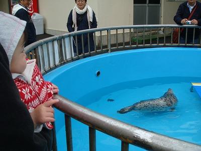 加茂水族館3