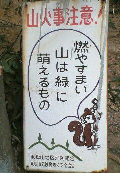 NEC_0089.jpg