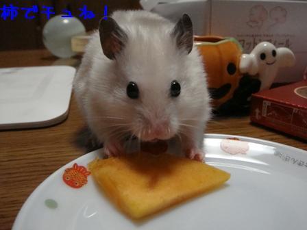 柿でチュね!