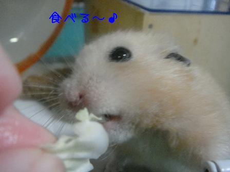 食べる~♪