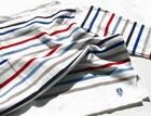 ORCIVAL(オーチバル)マルチボーダーのバスクシャツ