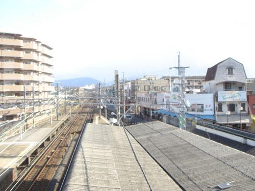 20060105b.jpg